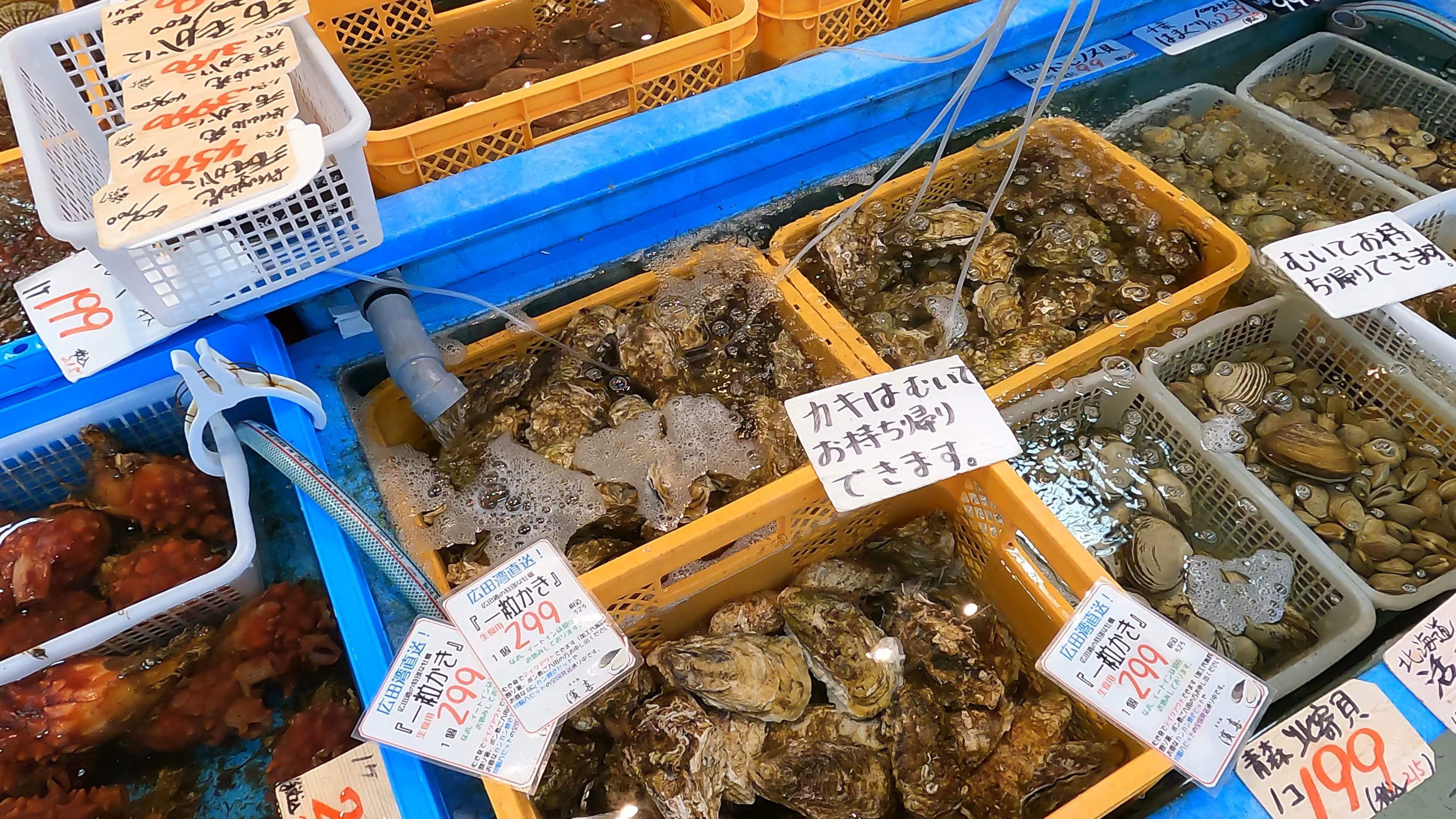 水揚げされた魚介類