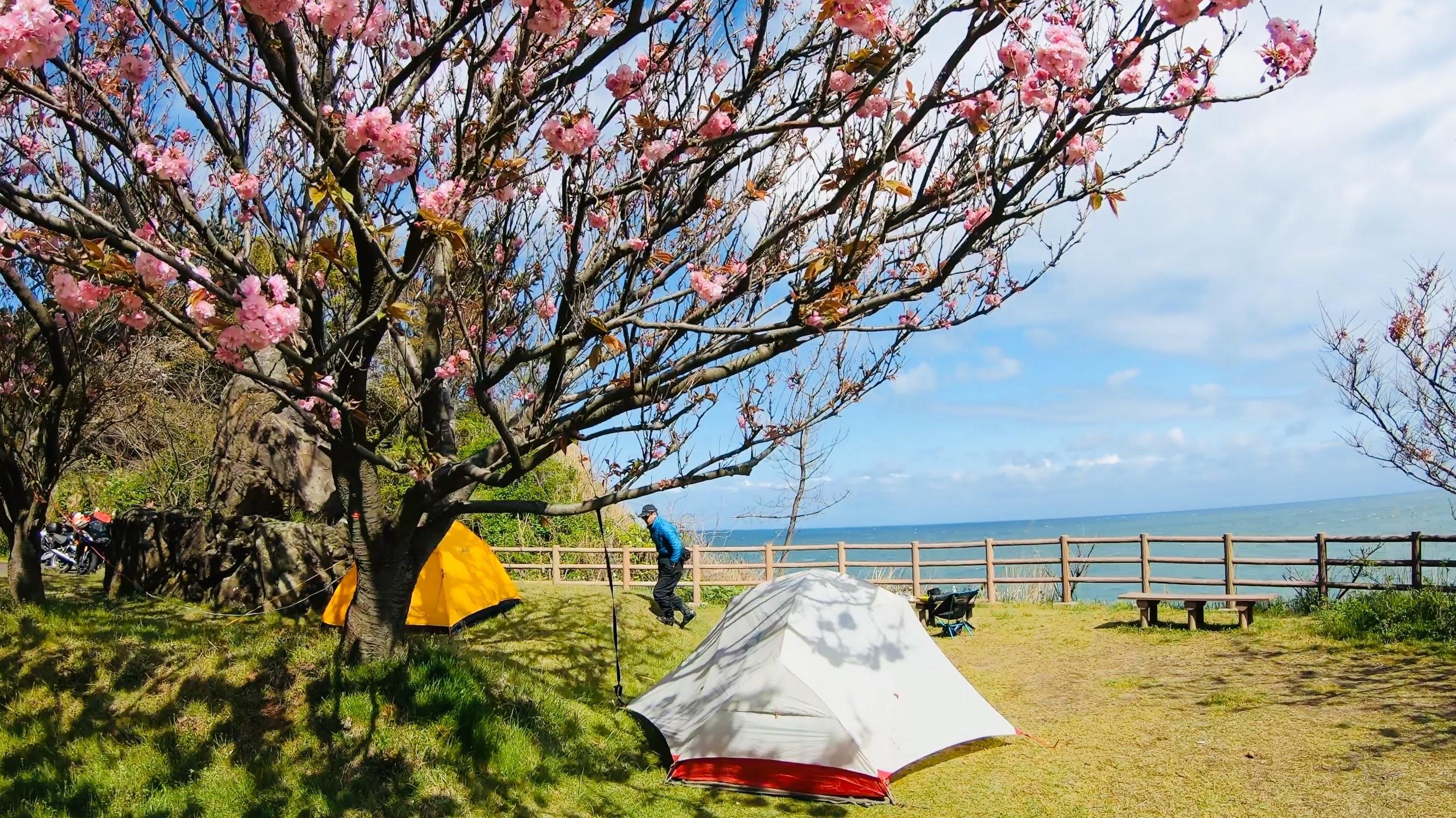 海辺のキャンプ場とテント